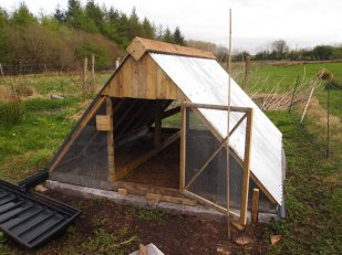 New chicken house