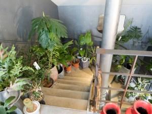 DULTON 屋上への階段
