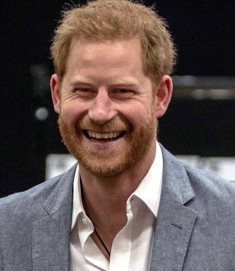 Prince Harry lands Silicon Valley job as he