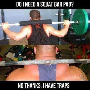 squat pad