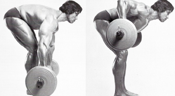 Top 5 Compound And Isolation Exercises For Each Body Part