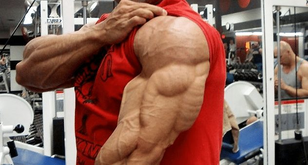 steroid arms