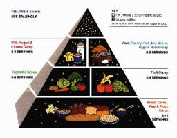 42-food-pyramid