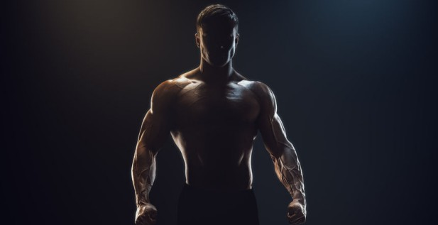 Image result for muscle