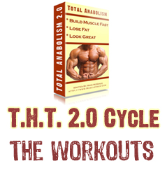 The THT 2.0 Training Cycle. The Full Workout & Logs! (part 8 )