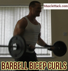Barbell Bicep Curls