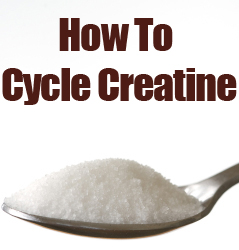 Creatine Cycling