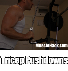 Tricep Pushdowns