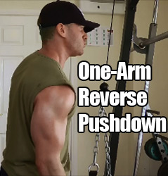One Arm Reverse Pushdowns