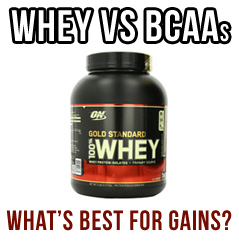 Whey Vs BCAAs. Which Is Best For Building Muscle?