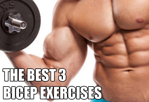 The Best 3 Exercises For Building Your Biceps