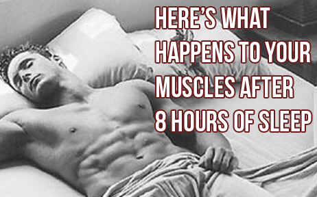 What Happens To Your Muscles After 8hrs Sleep