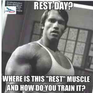 rest day gym meme