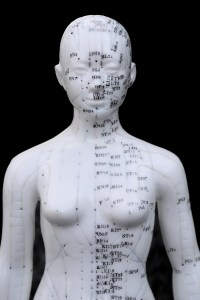 Muscle testing acupuncture meridians Portland