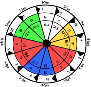 24 hour acupuncture meridian clock