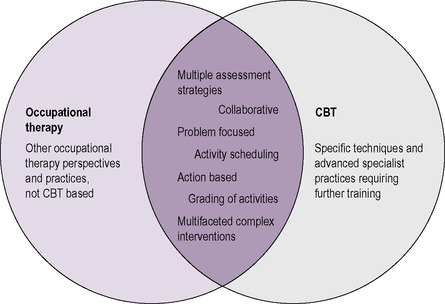 The cognitive behavioural frame of reference | Musculoskeletal Key