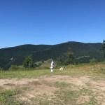 バスクの山でのくらし