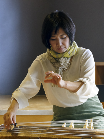 Japanese koto musician performing