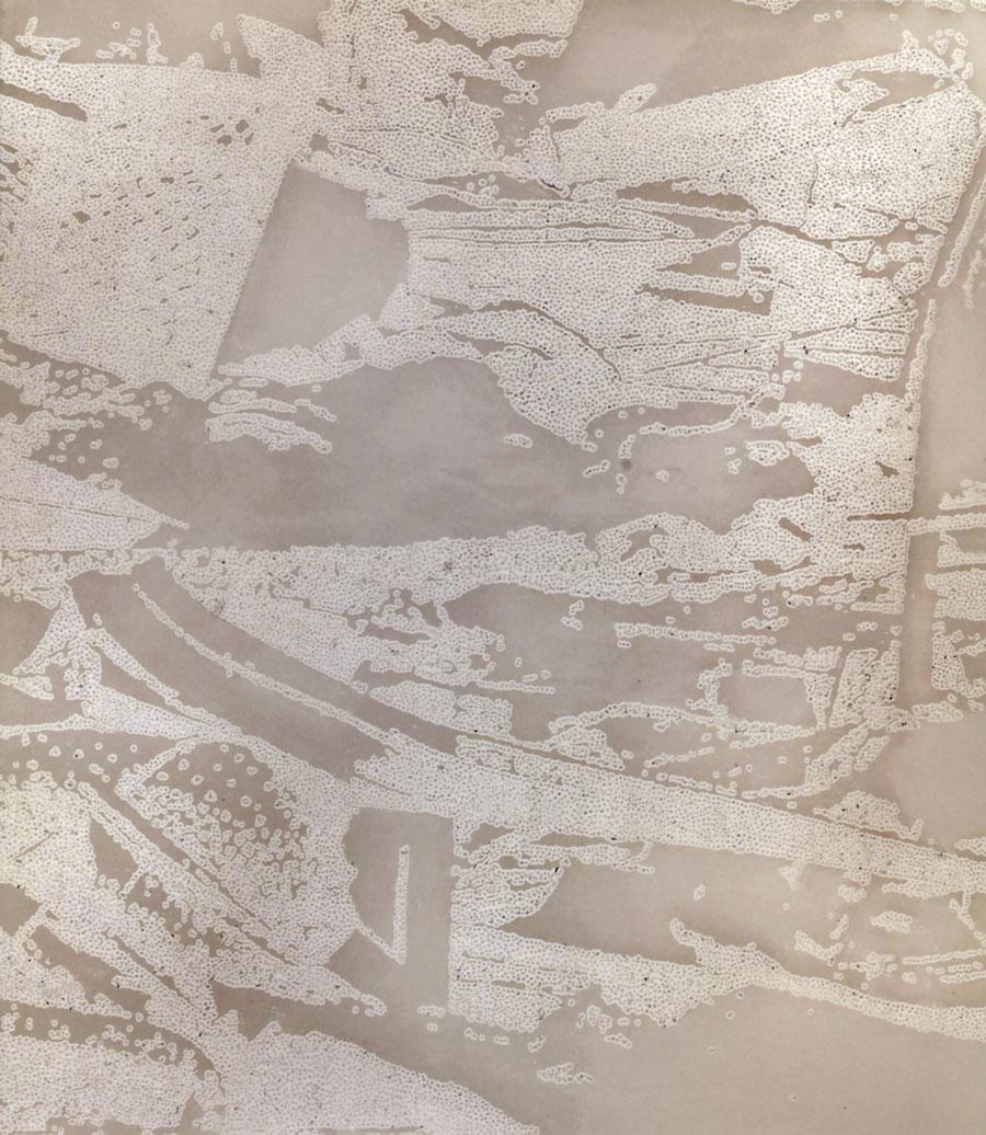 Iratxe Montero. Fractura de nuda precariedad. Exposiciones Museo Gustavo de Maeztu