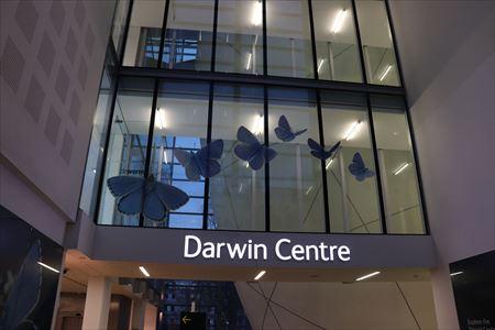ダーウィン・センター