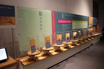 ScienceMuseum14_R