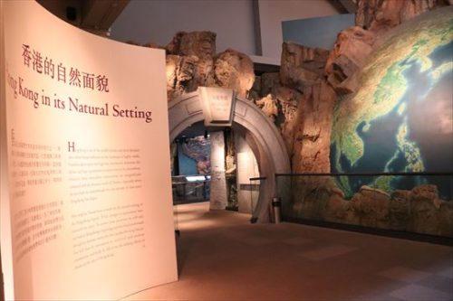 常設展示は自然史に関する展示からはじまります