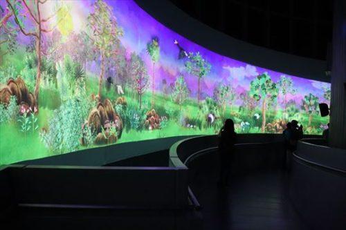 映像でシンガポールの自然を紹介