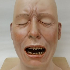 Airbrushed fibreglass head with rotten teeth
