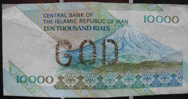 6 iranian
