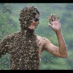 Bee-wearing Contest