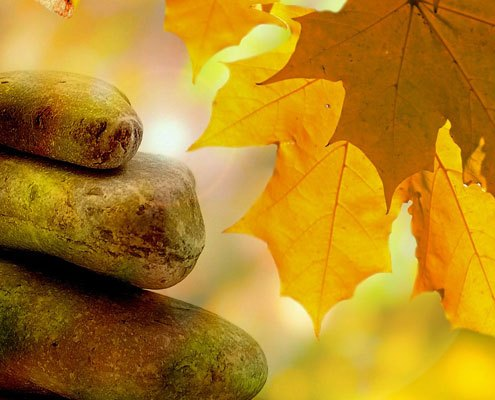 Rocks stacked together with an autumnal background