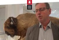 """Die neue Ausstellung """"Amerika"""" des Übersee-Museums Bremen"""