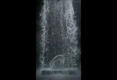 BILL VIOLA – INSTALLATIONEN