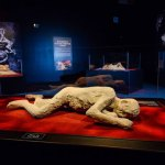 Installation view of body cast from Pompeii: The Exhibition, California Science Center