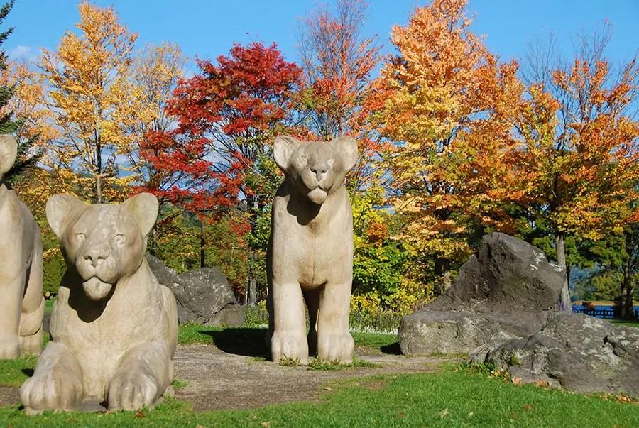 紅葉の中に立つライオン