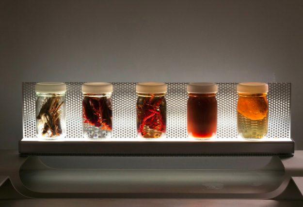 """害蟲展 season 2 に「昆虫""""調理""""標本」を応募しました。"""