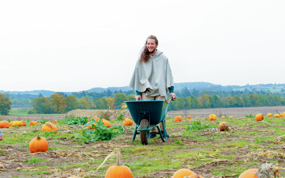 Locally sourced food and pumpkins