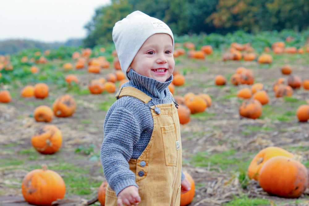 baby on a field with pumpkins