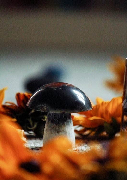 mushroom crystal
