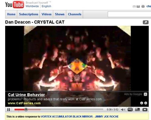 Cette vidéo n'est pas sur les chats.