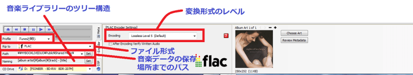 dBpoweramp CD Ripperでの音楽ファイルの保存場所と音楽ファイル形式,音楽ライブラリー構造の選択と決定