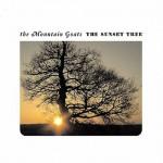 5456-the-sunset-tree