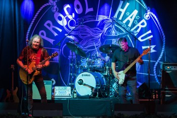 Still Shining On Brightly: A Preview of Procol Harum at City Winery