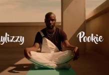 Laylizzy - Pookie Freestyle (Whoopty Remix)