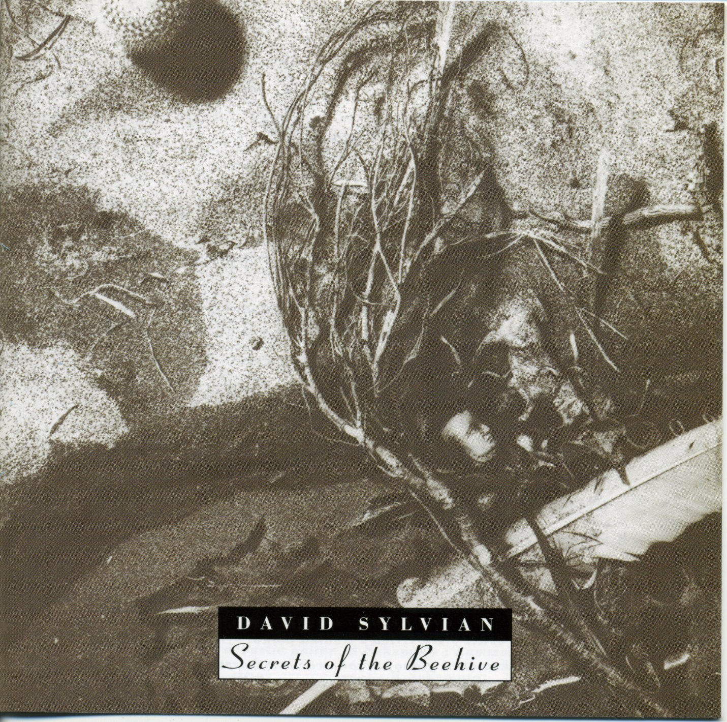 The Story Behind The Album: Secrets of the Beehive, by David Sylvian