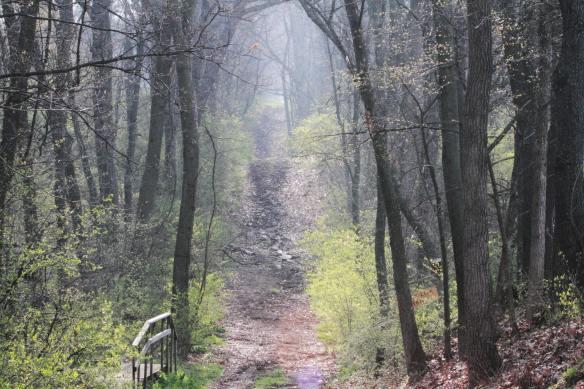 Spoon River College Arboretum