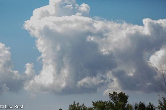 Cloudscape Big Marsh 07-30-17-6960