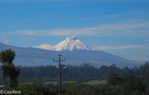 Cota Paxi Volcano 11-19-17-0960