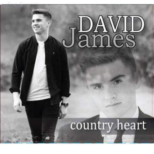David James Country Heart CD