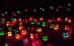 halloween pumpkins nashville hermitage